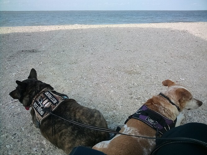 Magnolia Beach 040321c
